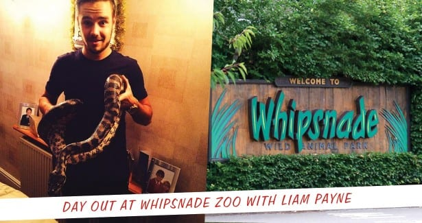 Whipsnade-With-Liam